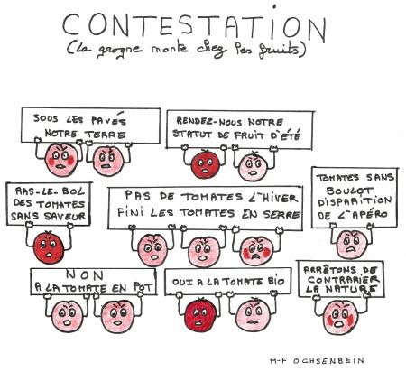 webzine,bd,zébra,fanzine,gratuit,bande-dessinée,marie-france ochsenbein,tomates,calligramme,dessin,poésie