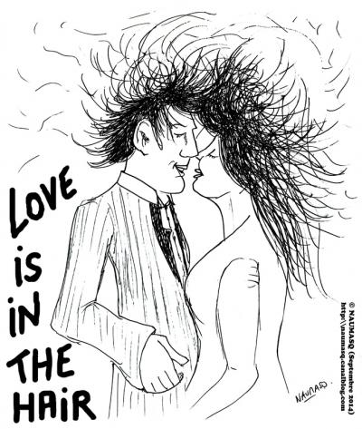 webzine,bd,gratuit,zébra,fanzine,bande-dessinée,humour,naumasq,love,hair,blog