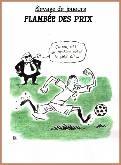 webzine,bd,zébra,gratuit,fanzine,bande-dessinée,caricature,lb,football,mercato,anthony martial,dessin,presse,satirique,editorial cartoon