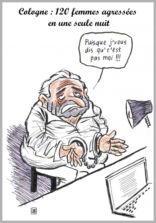 webzine,bd,gratuit,zébra,fanzine,bande-dessinée,caricature,dsk,cologne,agression sexuelle,dessin,presse,satirique,editorial cartoon,enigmatique LB