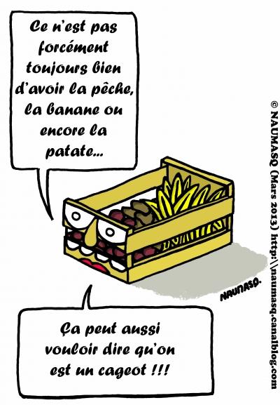 webzine,bd,gratuit,zébra,bande-dessinée,fanzine,humour,naumasq,cageot