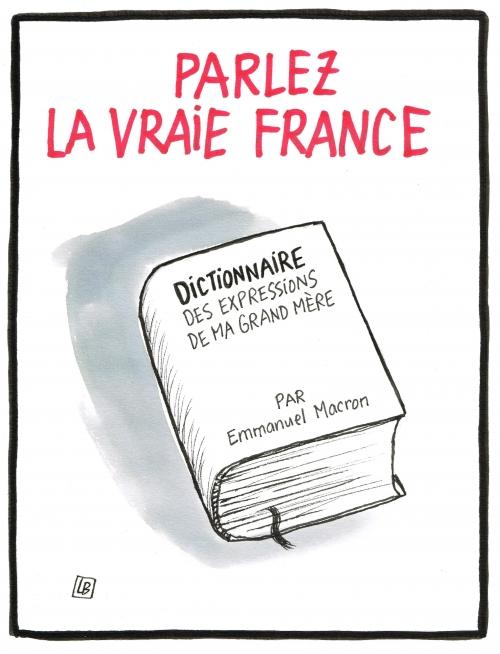 webzine,bd,zébra,gratuit,fanzine,bande-dessinée,caricature,macron,langage châtié,dessin,presse,satirique,editorial cartoon,lb