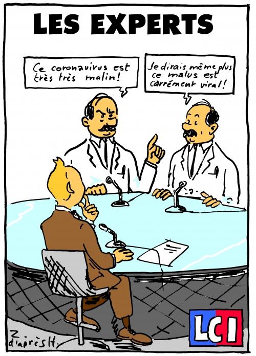 webzine,bd,zébra,gratuit,fanzine,bande-dessinée,caricature,expert,infectiologie,coronavirus,covid,vaccination,épidémie,dupont,tintin,épidémie,zombi,dessin,presse,satirique