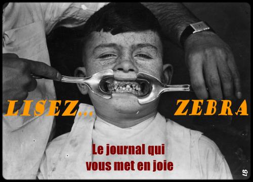 webzine,bd,zébra,fanzine,gratuit,bande-dessinée,pub,montage,lb