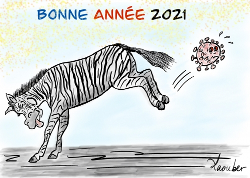 voeux,2021,Zébra,laouber,zèbre