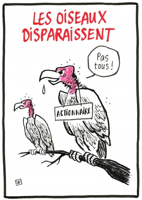 webzine,bd,zébra,fanzine,bande-dessinée,gratuit,caricature,vautours,lb,dessin,presse,satirique,editorial cartoon,siné-mensuel