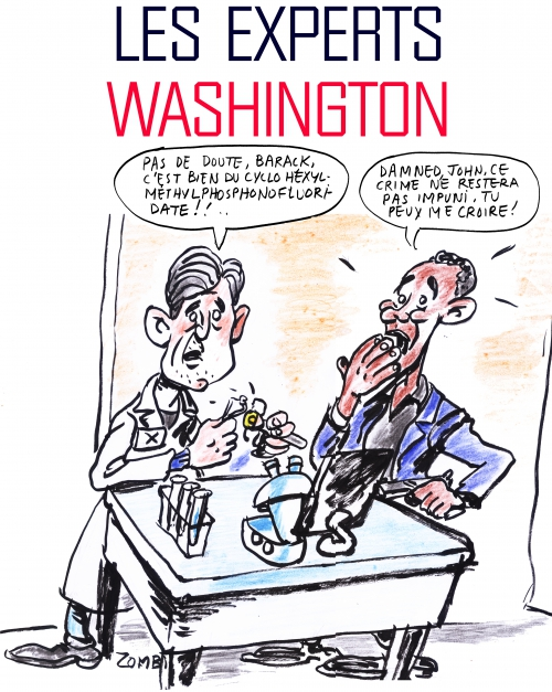webzine,bd,gratuit,fanzine,zébra,bande-dessinée,caricature,barack obama,john kerry,dessin,presse,satirique,zombi,editorial cartoon,experts,washington