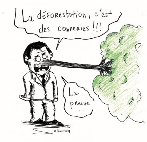 webzine,bd,zébra,gratuit,fanzine,bande-dessinée,gag,naumasq,déforestation,dessin,presse,humour