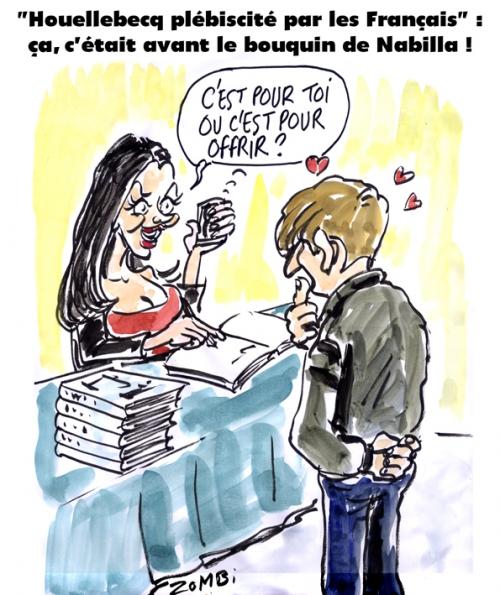 webzine,bd,gratuit,fanzine,bande-dessinée,caricature,nabilla,livre,houellebecq,dessin,presse,satirique,editorial cartoon,zombi