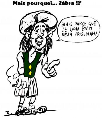 fanzine,zébra,bd,illustration,caricature,bob marley,zombi