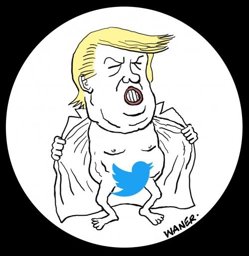 webzine,bd,zébra,fanzine,bande-dessinée,gratuit,caricature,donald trump,twitter,petit oiseau,dessin,presse,satirique,editorial cartoon,waner