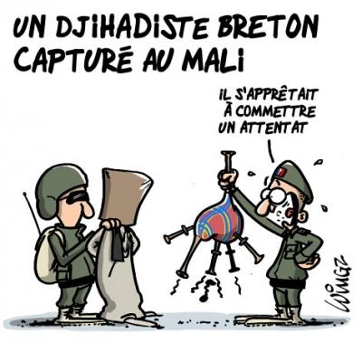 webzine,bd,gratuit,zébra,fanzine,bande-dessinée,dessin,presse,editorial cartoon,satirique,revue de presse,breton,jihadiste,sarrazin,wingz