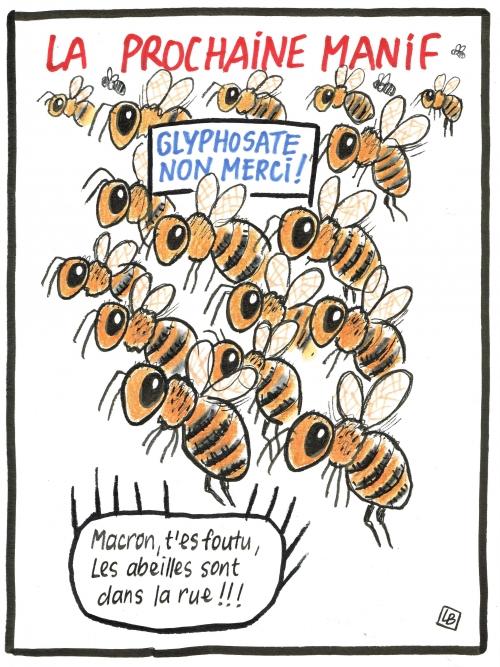 webzine,bd,gratuit,zébra,fanzine,bande dessinée,caricature,abeilles,pesticides,agriculture,dessin,presse,satirique,editorial cartoon,lb,siné-mensuel