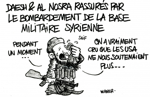 webzine,bd,zébra,gratuit,fanzine,bande-dessinée,caricature,bombardement,trump,usa,daech,syrie,dessin,presse,satirique,editorial cartoon,waner