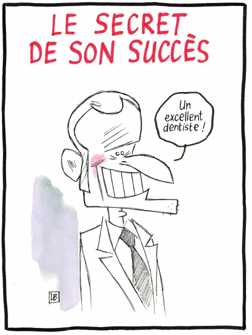 webzine,bd,fanzine,gratuit,zébra,bande-dessinée,caricature,emmanuel macron,présidentielle,2017,dessin,presse,satirique,editorial cartoon,lb