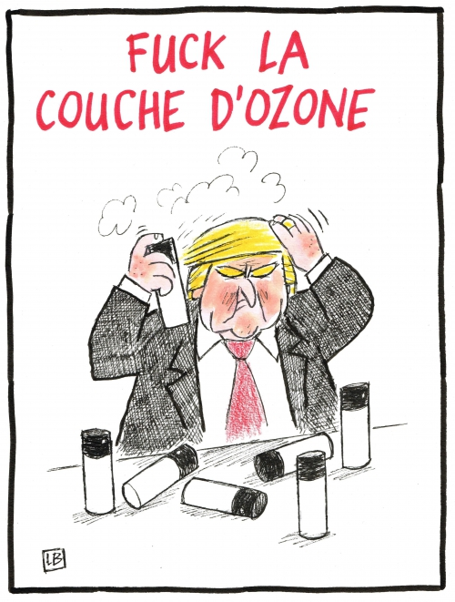 webzine,bd,zébra,gratuit,fanzine,bande-dessinée,caricature,donald trump,écologie,usa,dessin,presse,satirique,lb,editorial cartoon