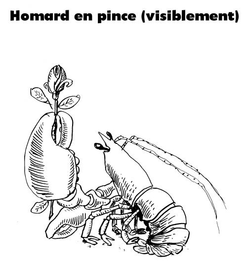 webzine,bd,gratuit,fanzine,zébra,bande-dessinée,burlingue,homard,dessin,satirique