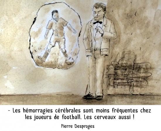 webzine,bd,zébra,gratuit,fanzine,bande-dessinée,caricature,pierre desproges,football,citation,portrait,dessin,satire,marc schmitt