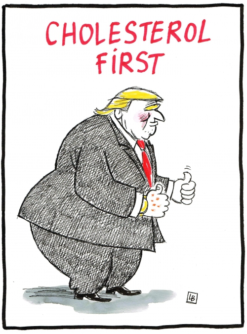 webzine,bd,gratuit,zébra,fanzine,bande-dessinée,caricature,donald trump,fat,dessin,presse,satirique,editorial cartoon,énigmatique lb