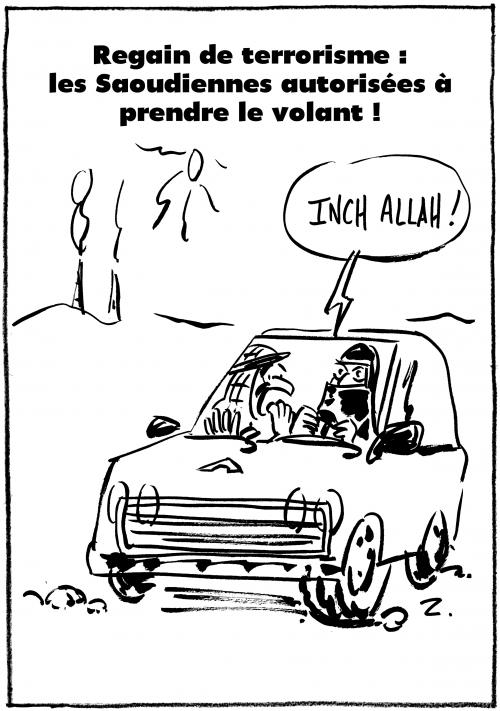 webzine,bd,gratuit,zébra,fanzine,bande-dessinée,gratuit,caricature,saoudiennes,terrorisme,permis,conduire,femme,dessin,presse,zombi,satirique,editorial cartoon,#inktober