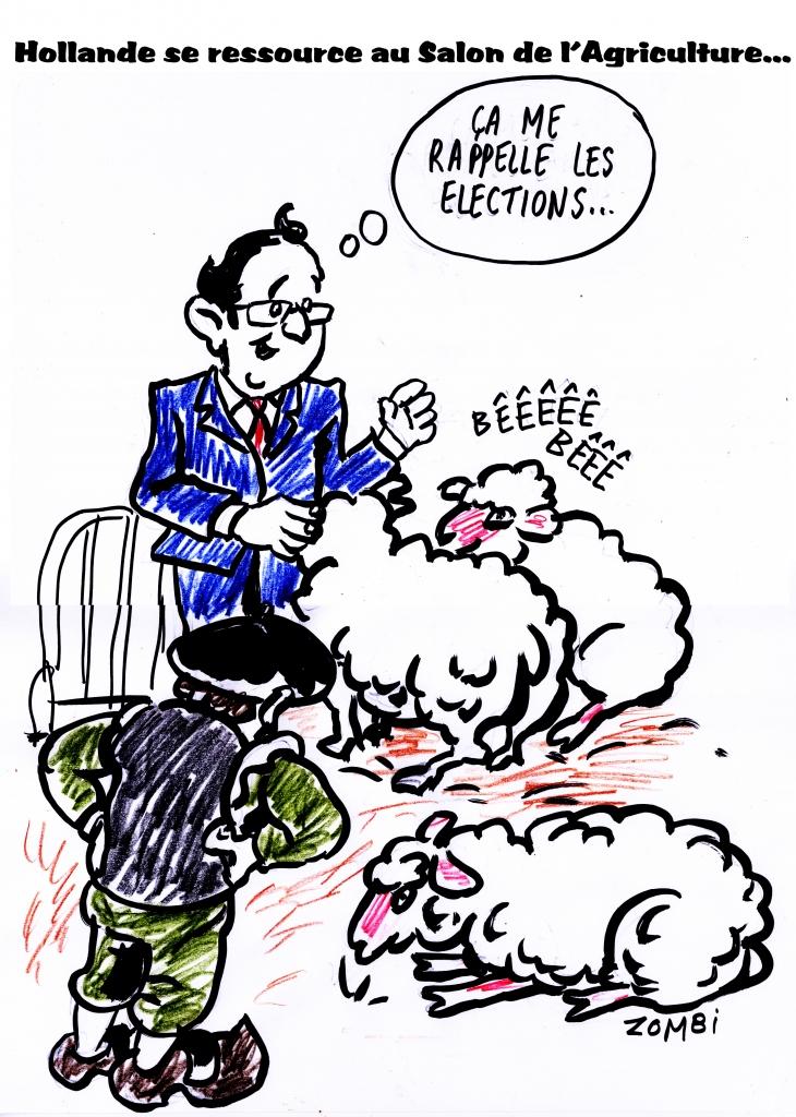 Fanzine zebra bande dessinee et caricature for Hollande salon agriculture