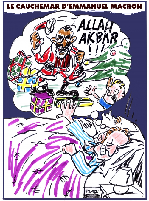 webzine,bd,zébra,fanzine,gratuit,bande-dessinée,caricature,emmanuel macron,djihad,cauchemar,père noël,kamikaze,dessin,presse,satirique,editorial cartoon,zombi