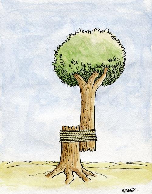 webzine,bd,zébra,gratuit,fanzine,bande-dessinée,caricature,écologie,reforestation,waner,siné-mensuel,dessin,presse,satirique