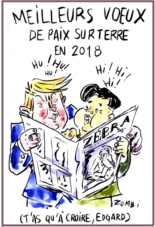 webzine,bd,zébra,gratuit,fanzine,bande-dessinée,caricature,donald trump,kim jong un,voeux,2018,paix,bonne année,dessin,presse,satirique,editorial cartoon,zombi