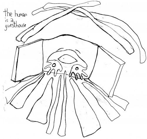 fanzine,zébra,bd,illustration,croquis,louise asherson,guesthouse