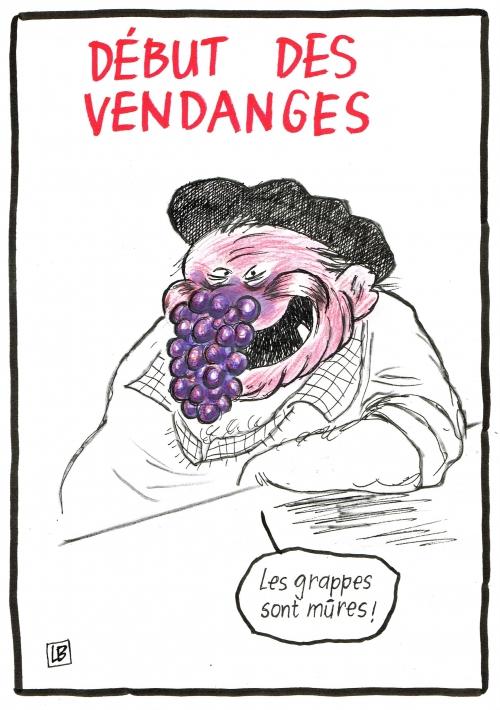 webzine,bd,zébra,fanzine,gratuit,bande-dessinée,caricature,vigneron,vendanges,grappe,raison,dessin,presse,satirique,humour,lb