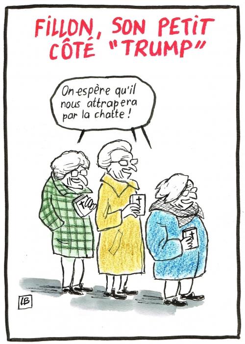 webzine,bd,gratuit,zébra,fanzine,bande-dessinée,caricature,françois fillon,donald trump,présidentielle,2017,editorial cartoon,satirique,dessin,presse