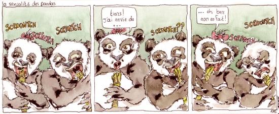 webzine,bd,zébra,fanzine,gratuit,bande-dessinée,strip,panda,sexualité,toubab,benoît,humour,gag,aquarelle