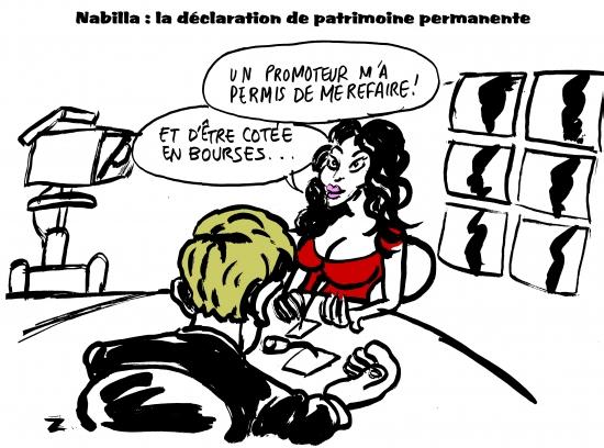 webzine,bd,gratuit,zébra,bande-dessinée,caricature,nabilla,satirique,zombi,dessin,presse