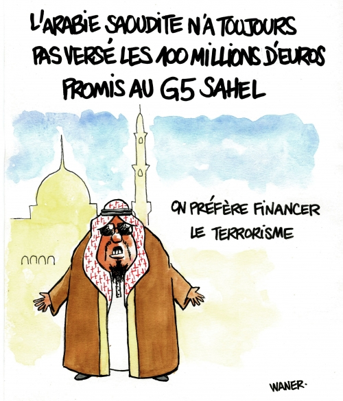 webzine,bd,zébra,gratuit,fanzine,bande-dessinée,caricature,arabie saoudite,terrorisme,sahel,waner,dessin,presse,satirique,editorial cartoon,waner,siné-mensuel