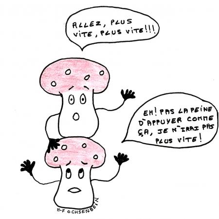 webzine,bd,zébra,fanzine,gratuit,bande-dessinée,marie-france ochsenbein,champignon