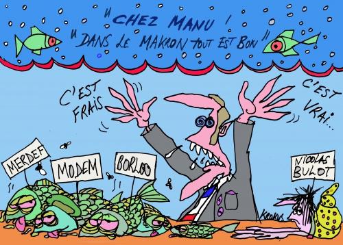 webzine,bd,gratuit,fanzine,zébra,bande-dessinée,caricature,président,macron,krokus,dessin,presse,satirique,editorial cartoon