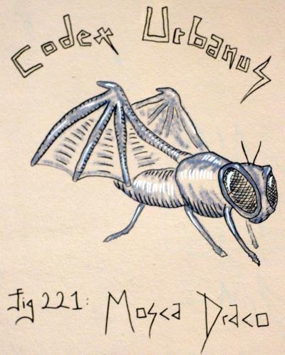 webzine,bd,gratuit,fanzine,zébra,bande-dessinée,street art,codex urbanus,graffiti,paris,rive-droite